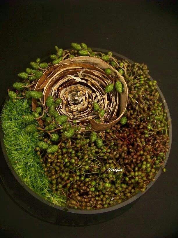 Let's enjoy autumn - Circular arrangement - a design piece ~ Onega Flora | Floral Art Forum - Facebook