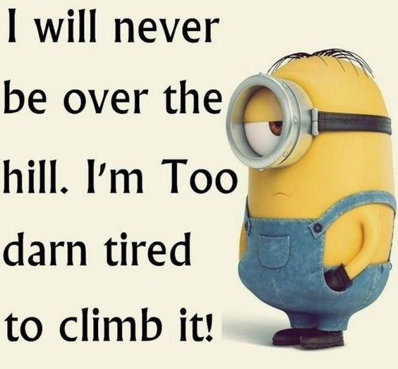 Minions are so cool and they look adorable, I love when they do stupid funny things, so hang on here are some more from them, Some really funny Minion Quotes