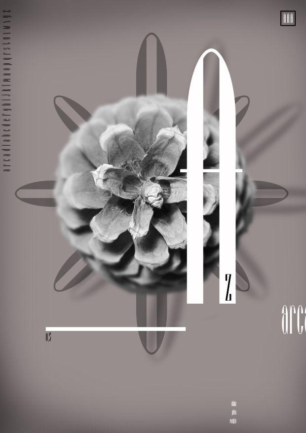 Typography Poster by Stuart Lansdowne