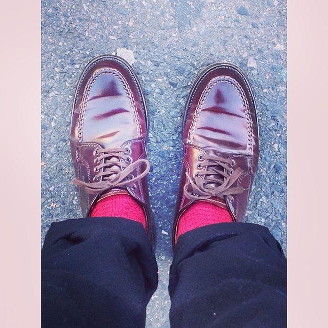 2018/03/10 20:49:31 hokku825 初めまして! よろしくお願い致します(^。^) とにかく、靴が好きです👞 愛用のオールデン♪ スニーカーも好きです👟  #ファッション好き #おしゃれ好き #スニーカー好き #靴好き #旅行好き #旅行好きな人と繋がりたい #写真好き #ビール好き #ハワイ好き #甥っ子大好き #お酒好きな人と繋がりたい #ワイン好き #オールデン #alden #コードバン #hawaii #靴好きな人と繋がりたい #ハワイ好きな人と繋がりたい #レザーソール #ワイキキ #差し色は赤 #靴下コーデ #初めまして #よろしくお願いします #