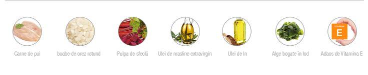 Salters conține doar ingrediente de înaltă calitate, care asigură o nutriție optimă cățeilor.