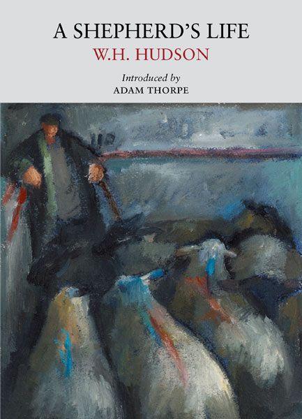A Shepherd's Life   Little Toller Books