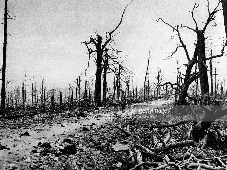 World War I. , Theatre of war , western front, Verdun 1916: . Road nearby Fort Souville (south of Forth Douaumont) which has been destroyed…