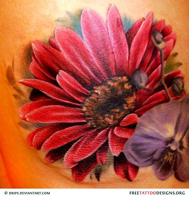 e9000a6c1 flower tatoo with shading | Here's the flower tattoo gallery. Click on the  pictures or tattoo ... | tatoo | Aster flower tattoos, Tattoos, Flower  tattoo ...