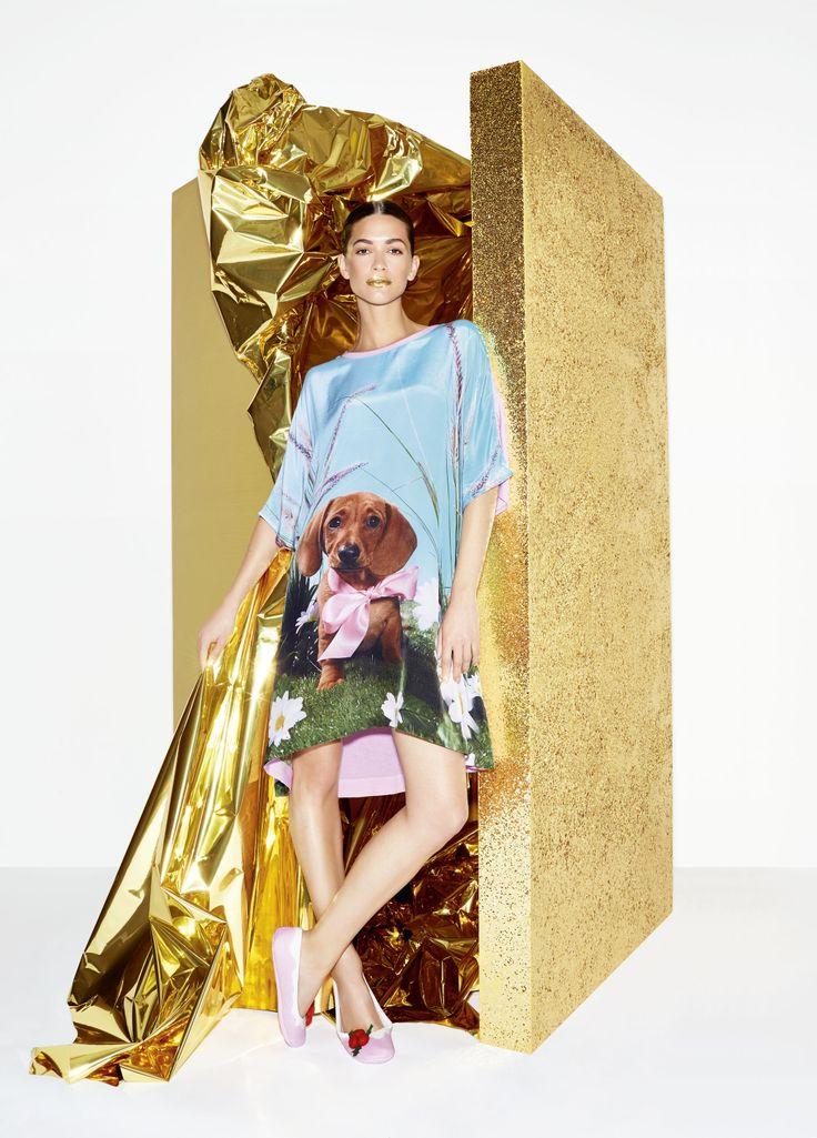 #peteralexander #silk #nightie #dachshund #daxxie #dog #pyjamas #gold