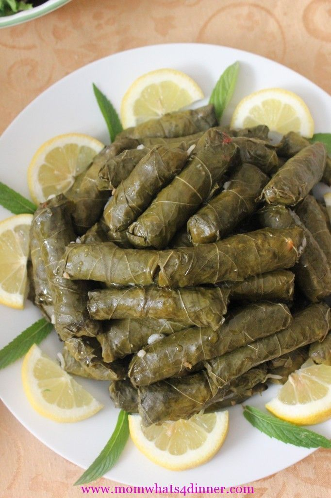 One of my favorite Arabic dishes! Dolma, Stuffed Grape Leaves