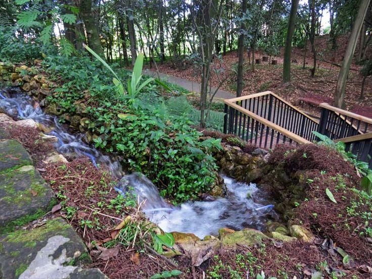 14. Hilo de agua que baja por la montaña bordeando las escaleras de madera.