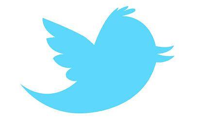 Le logo de Twitter serait un hommage à Larry Bird !