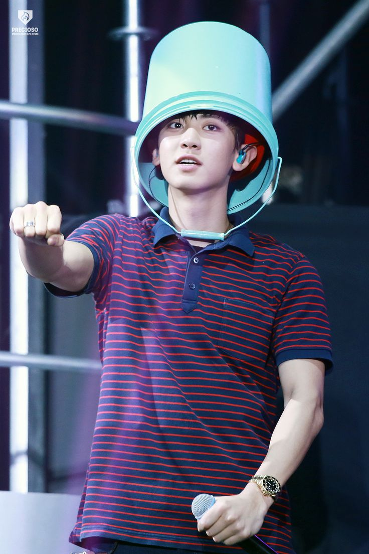 EXO'luXion 151121 : Chanyeol