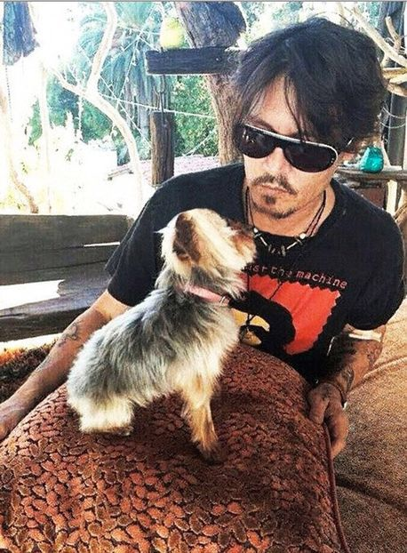 Puppy love                                                                                                                                                      More