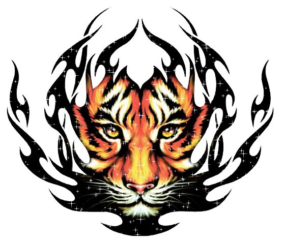 gifs tigres - Pesquisa Google | {FELINOS SELVAGENS} | Pinterest