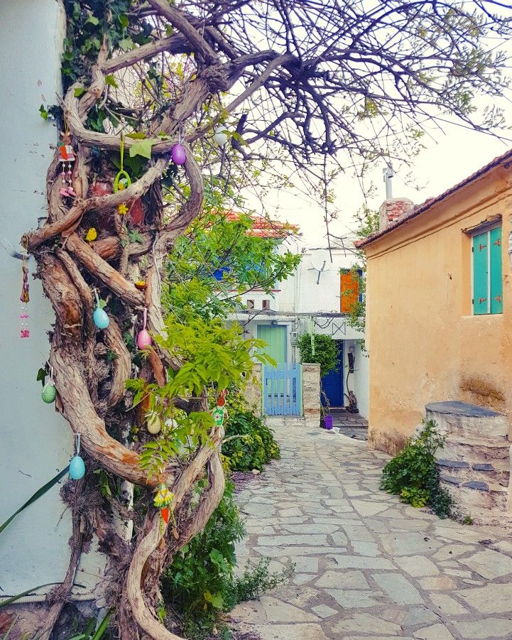 Easter decorations..🐇🐣🐥 Old village of Alonissos....🏘🏠 #angelos_apartments #alonissos #alonisos #alonnisos #sporades #greece #island #easter