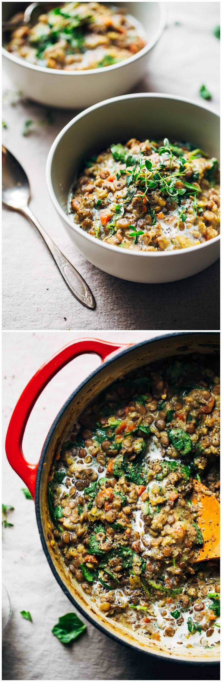 ONE-POT CREAMY SPINACH LENTILS