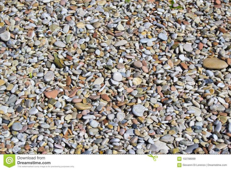 Small Stones On A Beach Used As Background Or Texture. For Graphical Concept - Download From Over 67 Million High Quality Stock Photos, Images, Vectors. Sign up for FREE today. Image: 102788099