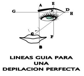 lineas de guia para depilacion
