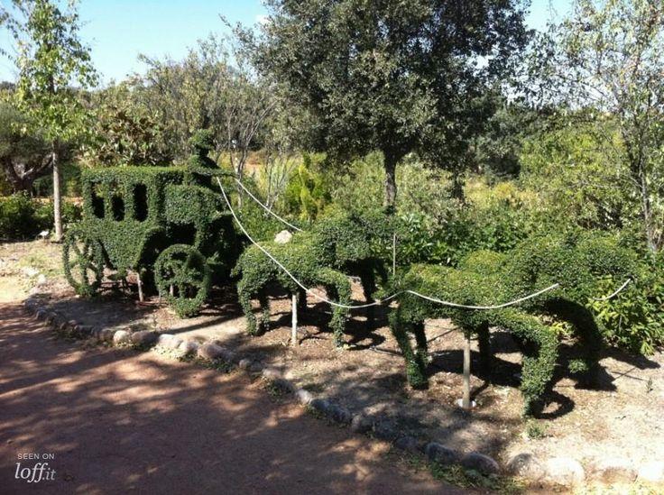Un bosque encantado muy cerquita de Madrid 6