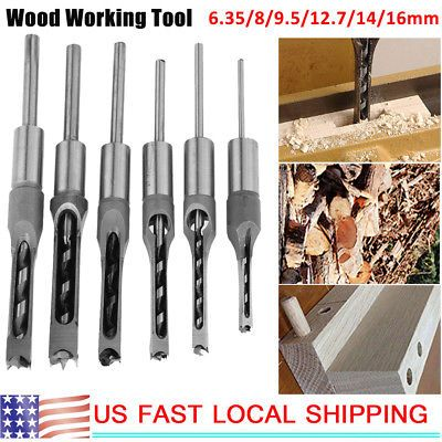 Great accessory for mortising, chisel, and woodworking. Plant Seeds. Quantity: 6…