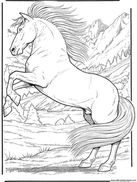 Printable Unicorn Coloring Pages For Adults : 29 best dibujos caballos images on pinterest