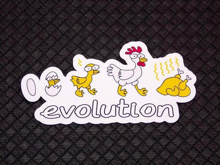 Chicken Evolution Funny Flexible Fridge Refrigerator Magnet Unique Gift Osarix