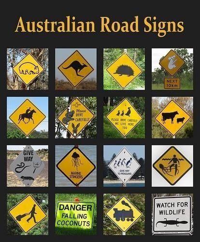 Apparently these signs are weird to people outside of Australia. I see most of these pretty often.
