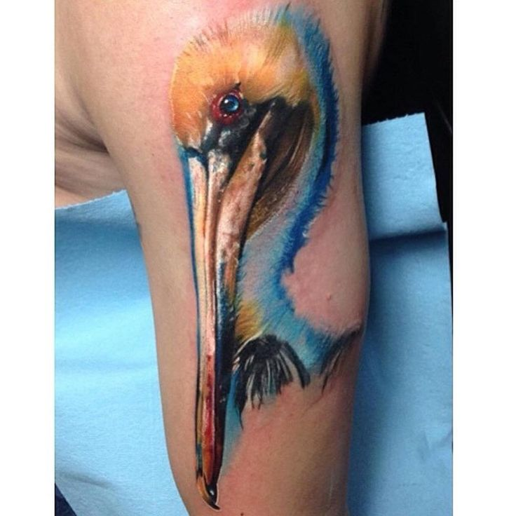 PELICAN TATTOO BY JOSHUA CARLTON