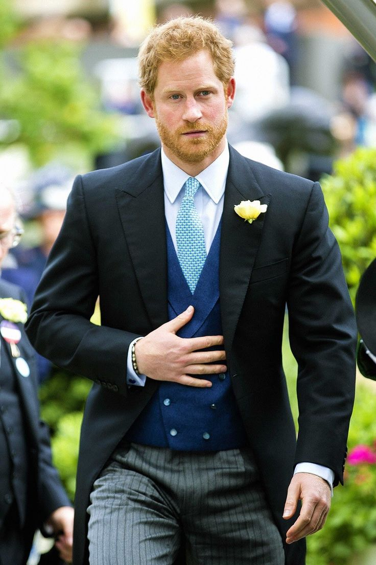 the life of a Prince Harry and the royal family
