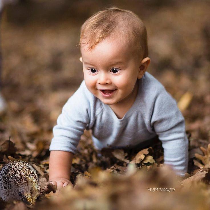 """""""The hedgehog and the baby""""   """"Ormanda bir gün"""" masalımıza devam ediyoruz. Yanı başında biten yavru ceylanı görünce çok şaşıran Can Bebek  yoluna devam etmiş ve bu sefer rastladığı bir yavru kirpi onu çok eğlendirmiş"""