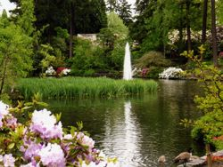 visit Crystal Springs Rhododendron Garden -- Admission is $4.00 for ages 12+ and free for children under 12.