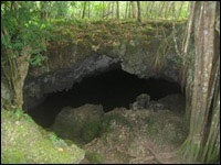 Cuenta la leyenda que fue en esta cueva donde el pirata Henry Morgan guardó sus tesoros. Por esto la Cueva de Morgan es un lugar que muchos de los turistas que visitan la isla no se pierden. Si te gustan las historias de piratas no dejes de visitar este lugar