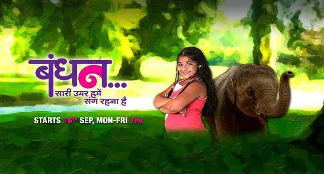 BandhanBandhan 29th December 2014 Zee tv HD episode