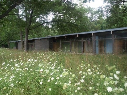 Mid-century modern for sale