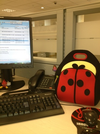 Cut as a Bug Dabbawalla Lunchbag   Encuéntrala en www.qipi.co #officelunchbag #fashionlunchbag #jnjcolombia