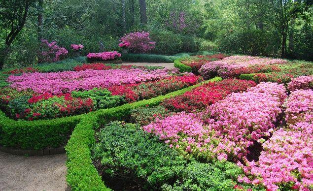Bayou Bend Botanical Gardens Houston Gardens