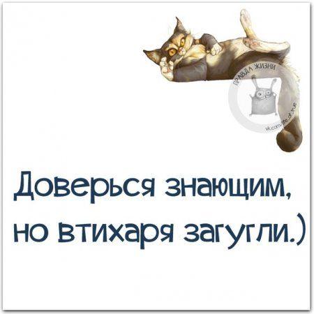 Позитивные фразы в картинках, для улыбки :-)