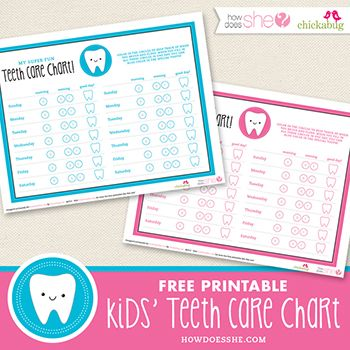 Best 25+ Teeth chart for kids ideas on Pinterest Baby teething - teeth chart template
