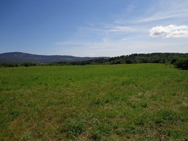 Solymár Jegenye-völgy részén eladó egy 2687 nm-es mezőgazdasági terület. A telek 11 méter széles. MÁ-ÖKO övezetben található, ökológiai gazdálkodás céljára kijelölt  általános mezőgazdasági terület, mely elsősorban az ökológiai, másod sorban a hagyományos növénytermesztés állattartás, és állattenyésztés céljára szolgál.