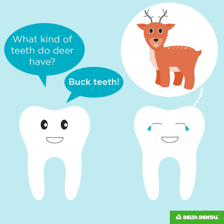 Oh deer.... Is our dental humor punny? We hope so! If you love dental jokes as much as we do, they head on over to our blog!