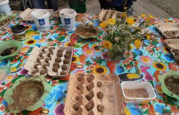 help de natuur een handje - maak zaadbommen