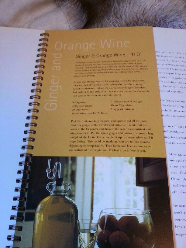 Ginger and Orange wine