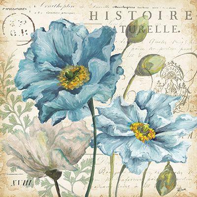 Poppies Histoire Naturelle II  18x18