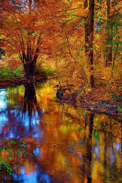 Fall foliage reflected in the West River, Guilford, Connecticut