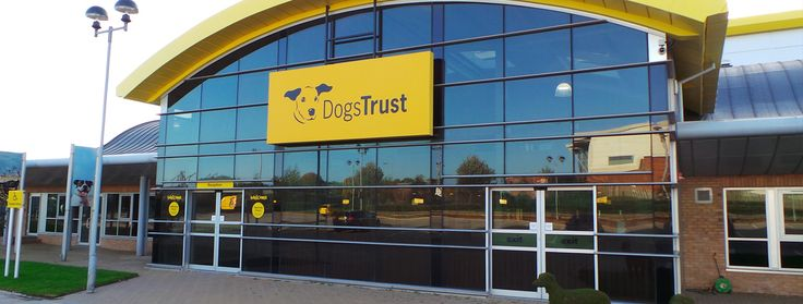 Take a trip to your local Dogs Trust this Mother's Day! We have 20 rehoming centres across the Uk - so there's bound to be one near you! Were in Ballymena, Basildon Essex, Bridgend, Canterbury, Evesham, Glasgow, Harefield, Ilfracombe, Leeds, Loughborough, Manchester, Merseyside Liverpool, Newbury, Shoreham, Snetterton, Shrewsbury, West Calder and Kenilworth! Mother's day day-out ideas, mother's day gifts!