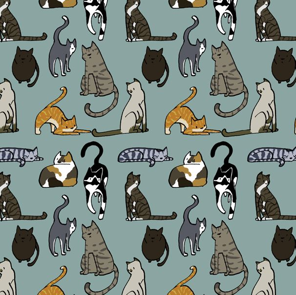 CAT PATTERN via daisyhillyardillustration