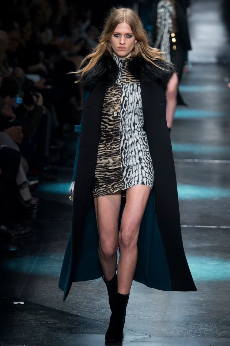 Roberto Cavalli - Fall 2015 Ready-to-Wear - Look 1 of 54