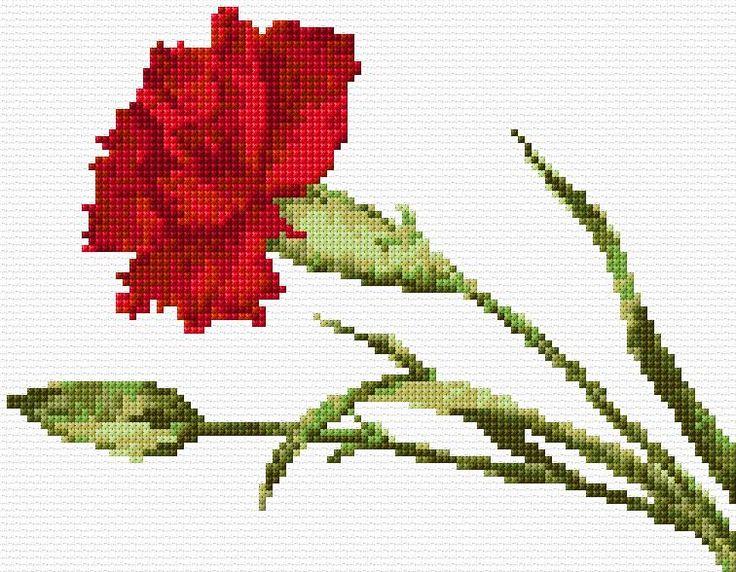 Cross Stitch | Carnation xstitch Chart | Design