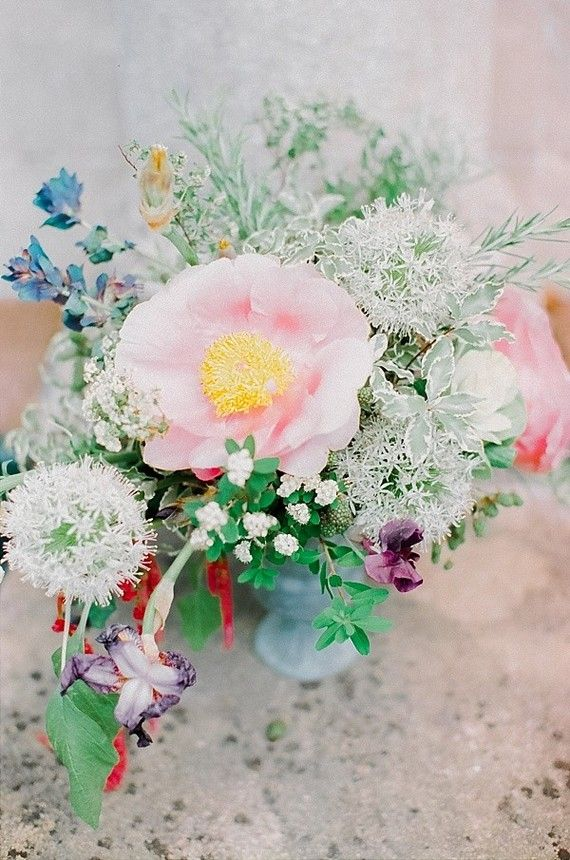 8 Best Beautiful Flowers In The World Images On Pinterest