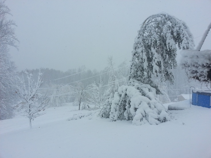 Crystal Kniceley from Sutton, WV sent in this snow shot.
