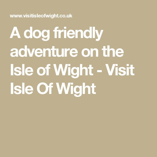 A dog friendly adventure on the Isle of Wight - Visit Isle Of Wight