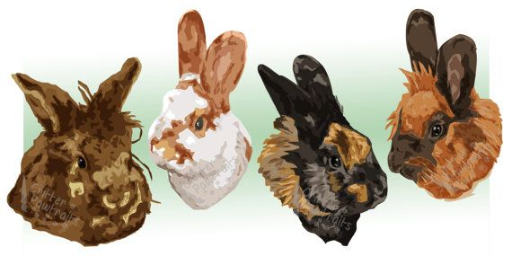 Customised Pet and Animal Illustrated Prints- Various Sizes Available