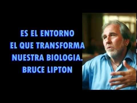 Conferencia de Bruce Lipton - YouTube